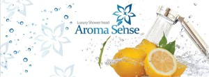 This is an image of an Aroma Sense shower
