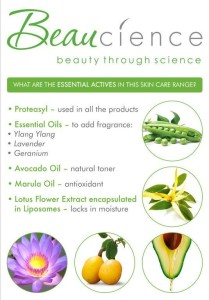 Why you should use Beaucience poster