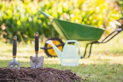 Gardening tools in the garden on a sunny day; Shutterstock ID 316875668; PO: Cat Overman; Job: blog post