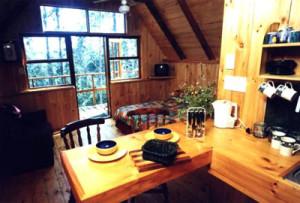 owl cabin 1