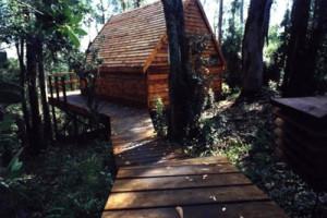 owl cabin 2