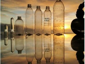 Photo of bottles