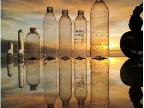 Photo of bottles