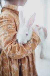 photo of little girl cradling bunny