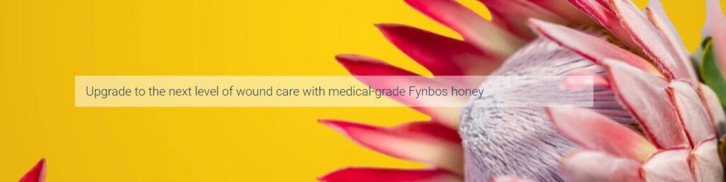 Melcura Fynbos Honey