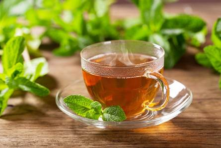 Rooibos and mint