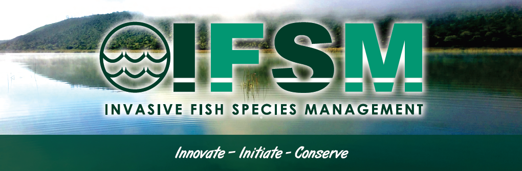 IFSM logo